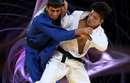 ATTENTION pas de cours judo le 11 Novembre 2017